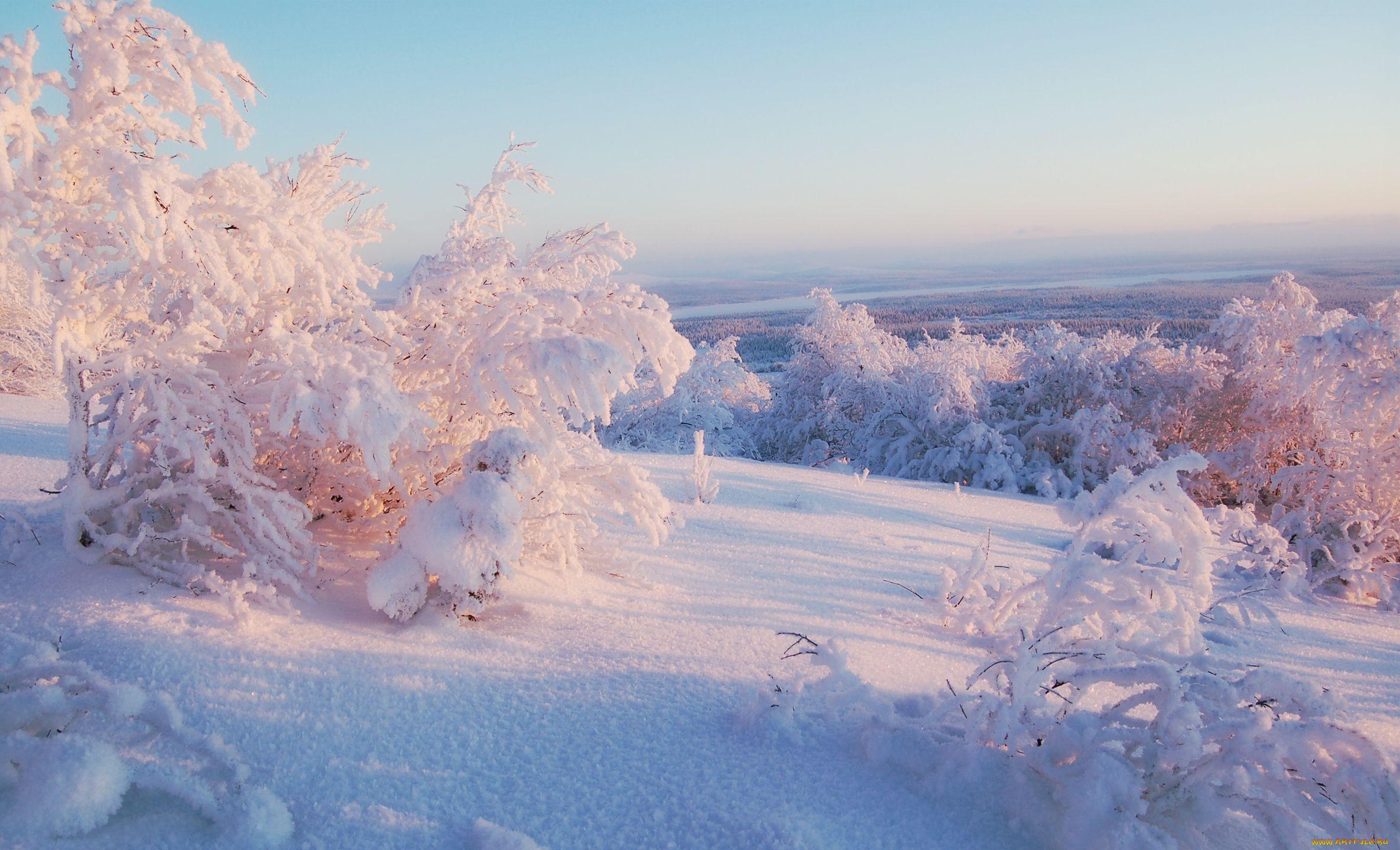мнению зимний пейзаж фото высокого разрешения шарики